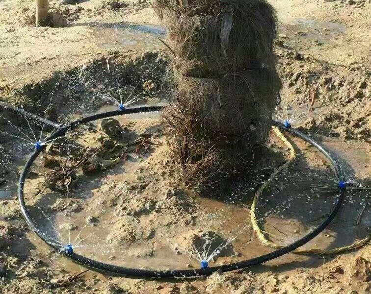 分水器安装实例